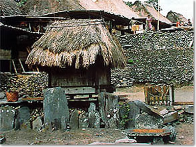 The traditional village of Bena, Central Flores