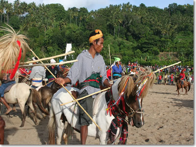 Traditional culture of Sumba island - Pasola spear fighters on horseback